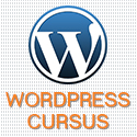 internet-marketing-nederland-cursus-wordpress